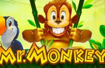 Mr. Monkey Pokie Review